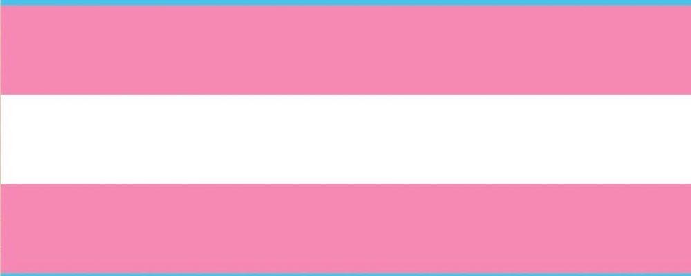 La bandera trans cumple 20 años. Conoce toda la historia